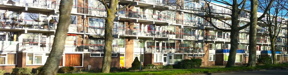 banne flats banner
