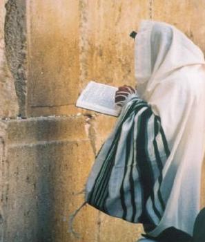 joodseman bidden